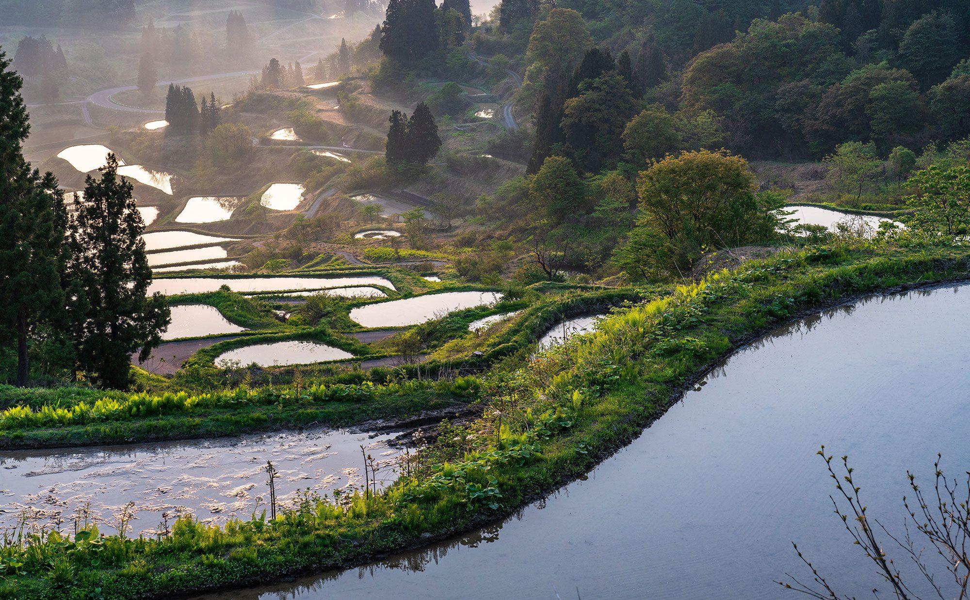 日本の絶景がすぐそこに! 旅に出なくても美しい景色に出会える暮らし