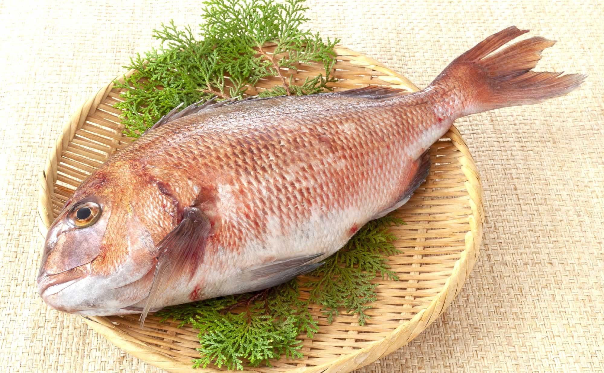 鯛をさばいたことありますか? 基本のさばき方と美味しいシンプルレシピ