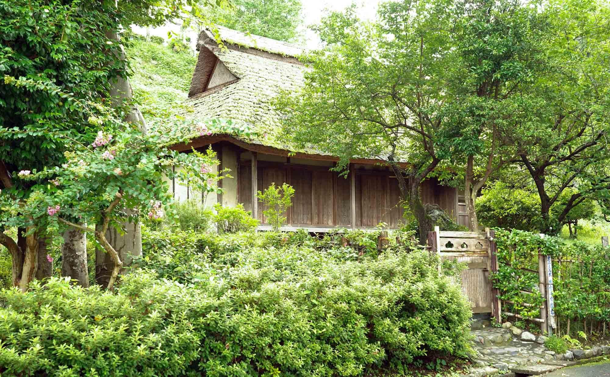庭の恵みを満喫しよう。一戸建てに住むなら知っておきたい、庭木の剪定方法